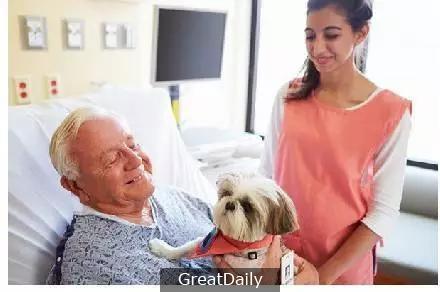 在離開世界前,寵物來到了老人的身邊,他開心的笑聲讓所有人落淚