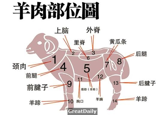 知識庫:豬、牛、羊、雞等原料的分割與用途